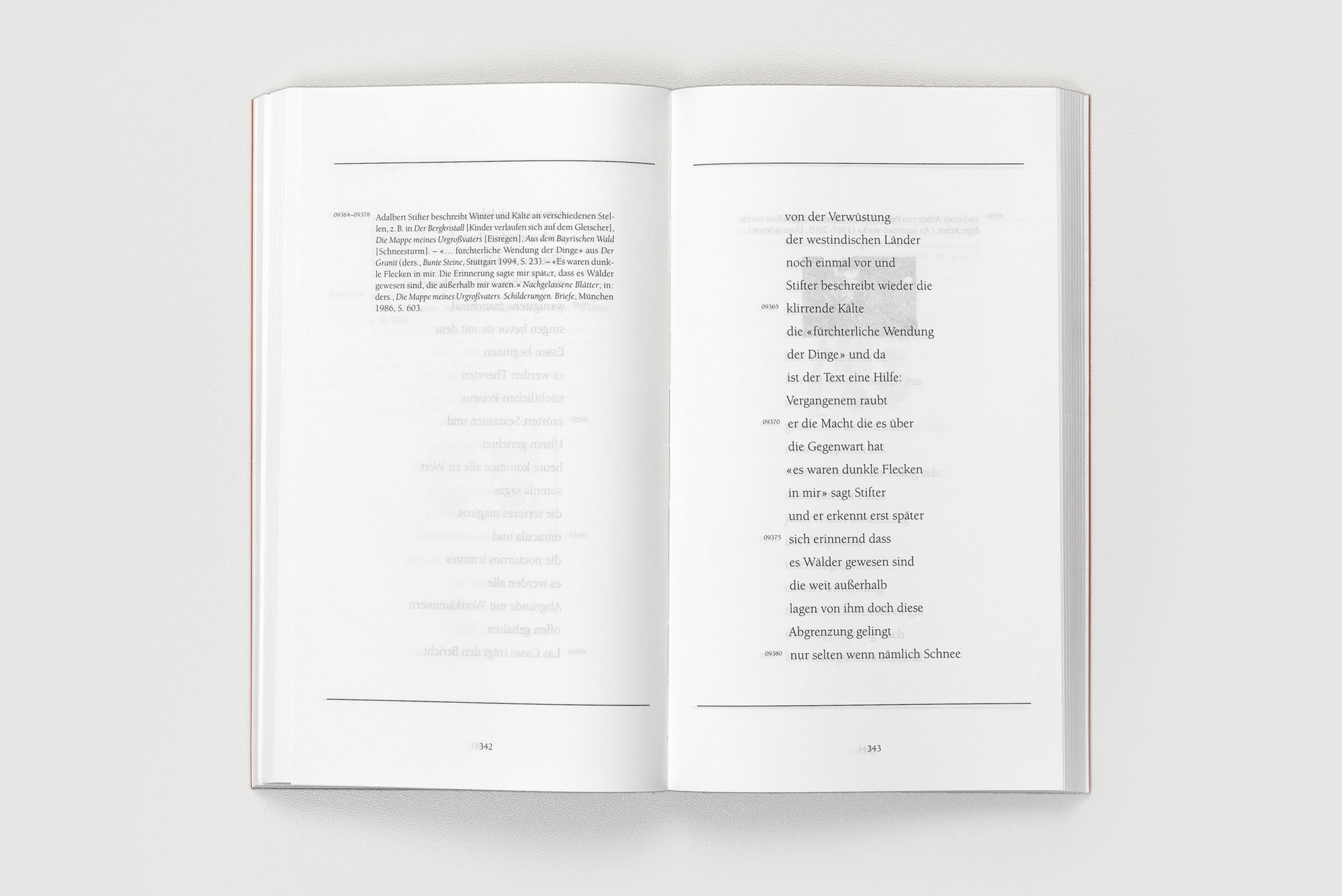 Frand Dodel – Nicht bei Trost, haiku s342 ©Atelier Pol